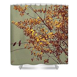 Hummingbirds On Yellow Tree Shower Curtain by Ben and Raisa Gertsberg