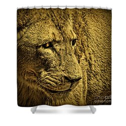 Hunter Shower Curtain by Andrew Paranavitana
