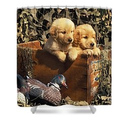 Hunting Buddies - Fs000130 Shower Curtain by Daniel Dempster