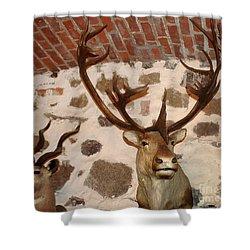 Hunting Trophys Shower Curtain by Rudi Prott