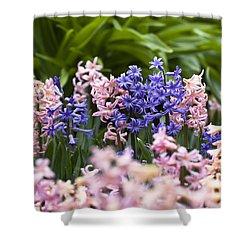 Hyacinth Garden Shower Curtain by Frank Tschakert