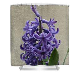 Hyacinth Purple Shower Curtain by Jeff Kolker