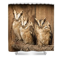 I Am Almost Awake Shower Curtain by Anne Gilbert
