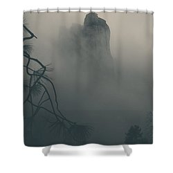 I Can Barely Remember Shower Curtain by Laurie Search