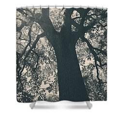 I Can't Describe Shower Curtain by Laurie Search