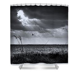 I Fly Away Shower Curtain by Marvin Spates
