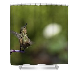 I Got It Shower Curtain by Mike Herdering