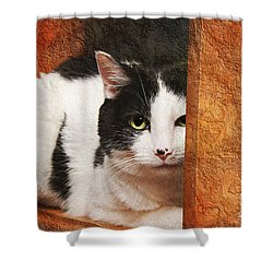 I Have My Eye On You Shower Curtain by Andee Design