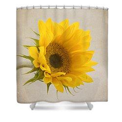 I See Sunshine Shower Curtain by Kim Hojnacki