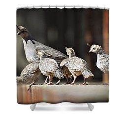 I Think I Can Fly  Shower Curtain by Saija  Lehtonen