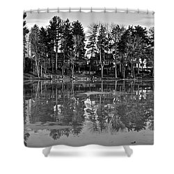 Icy Pond Reflects Shower Curtain by Frozen in Time Fine Art Photography