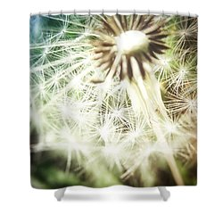 Illuminated Wishes Shower Curtain by Marianna Mills