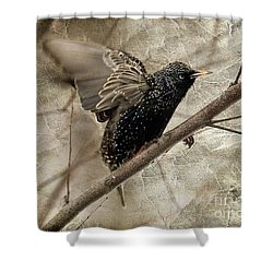 I'm Outta Here Shower Curtain by Lois Bryan