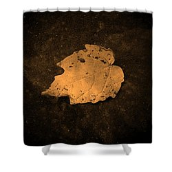 Impressions Shower Curtain by Chris Berry