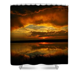 In All His Glory Shower Curtain by Jeff Swan
