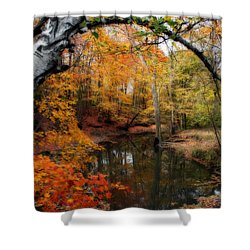 In Dreams Of Autumn Shower Curtain by Kay Novy