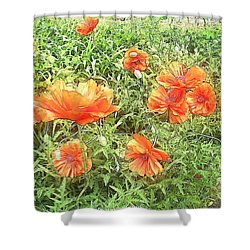 In Flanders Fields The Poppies Grow Shower Curtain by PainterArtist FIN