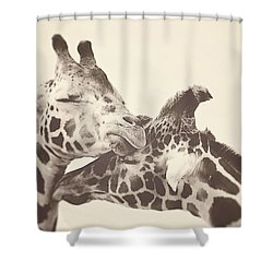 In Love Shower Curtain by Carrie Ann Grippo-Pike