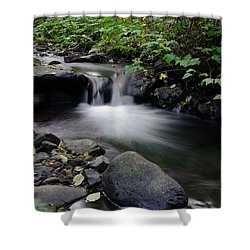 In Slow Pools Where Serenity Abounds Shower Curtain by Jeff Swan