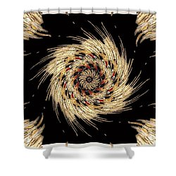 Indian Dance Shower Curtain by Michael Damiani