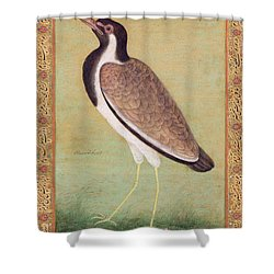 Indian Lapwing Shower Curtain by Mansur