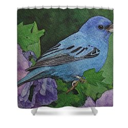 Indigo Bunting No 2 Shower Curtain by Ken Everett