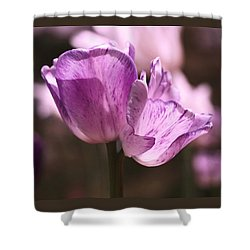 Inseparable Shower Curtain by Rona Black