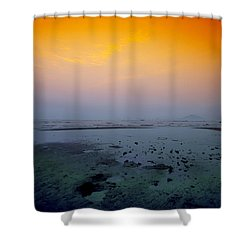 Into The Blue Shower Curtain by Midori Chan