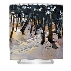 Into The Woods Shower Curtain by Spencer Meagher