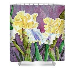 Iris Cream Duo Shower Curtain by Kathryn Duncan