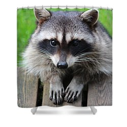 Is This The Way You Pray Shower Curtain by Kym Backland