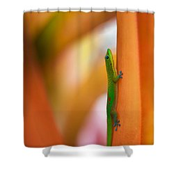 Island Friend Shower Curtain by Mike Reid