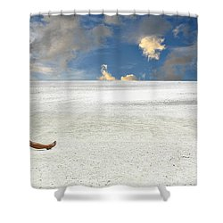 Isn't Life Strange Shower Curtain by Laura Fasulo