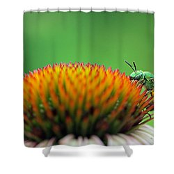 It Is A Hard Knock Life  Shower Curtain by Juergen Roth