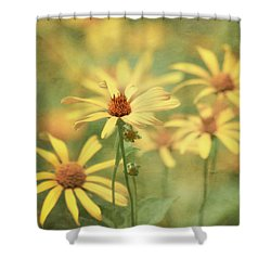 It Must Be Shower Curtain by Kim Hojnacki