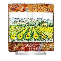 Italy Sketches Sunflowers Of Tuscany Shower Curtain by Irina Sztukowski