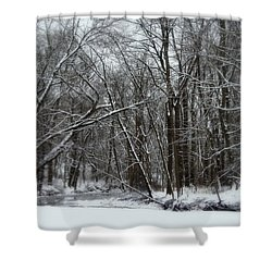 Its A Beautiful Winter Shower Curtain by Kay Novy