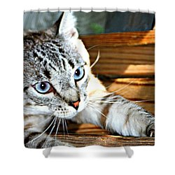 It's A Stretch Shower Curtain by Barbara S Nickerson