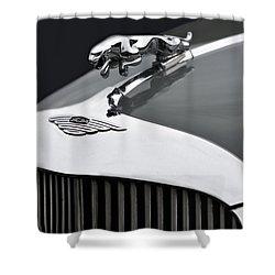 Jaguar Mk Ix Hood Shower Curtain by Susan Candelario