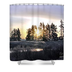January Morning Shower Curtain by Rory Sagner
