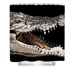 Jaws Shower Curtain by Douglas Barnard