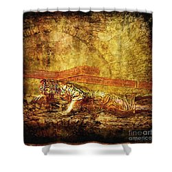 Jesus Falls Third Time Via Dolorosa 9 Shower Curtain by Lianne Schneider