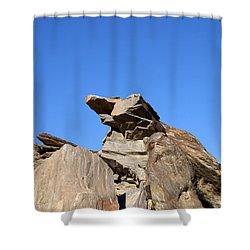Joshua Tree Monster Rock Shower Curtain by Barbara Snyder