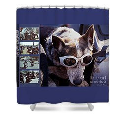 Just Call Me Dog Shower Curtain by Linda Lees