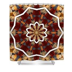 Kaleidoscope 29 Shower Curtain by Lena Photo Art