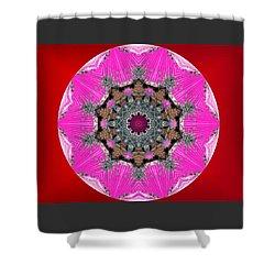 Kaleidoscope Shower Curtain by Mike Breau