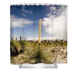 Kangaroo Tail Shower Curtain by Tim Hester