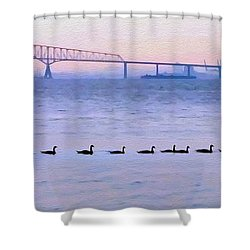 Key Bridge And Waterfowl Shower Curtain by Brian Wallace