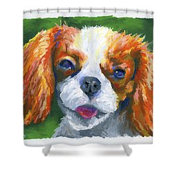 King Charles Shower Curtain by Stephen Anderson