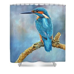 Kingfisher Shower Curtain by David Stribbling